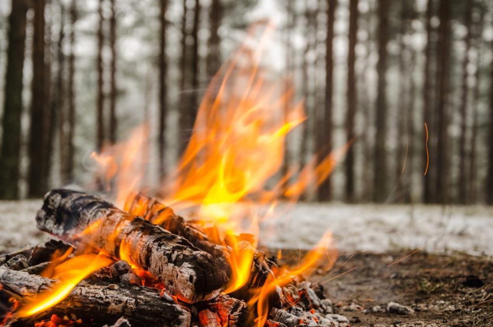 故事成語「火を見るよりも明らかなり」の意味と使い方:例文付き ...