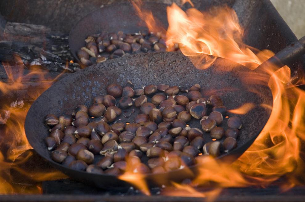 ことわざ「火中の栗を拾う」の意味と使い方:例文付き – スッキリ